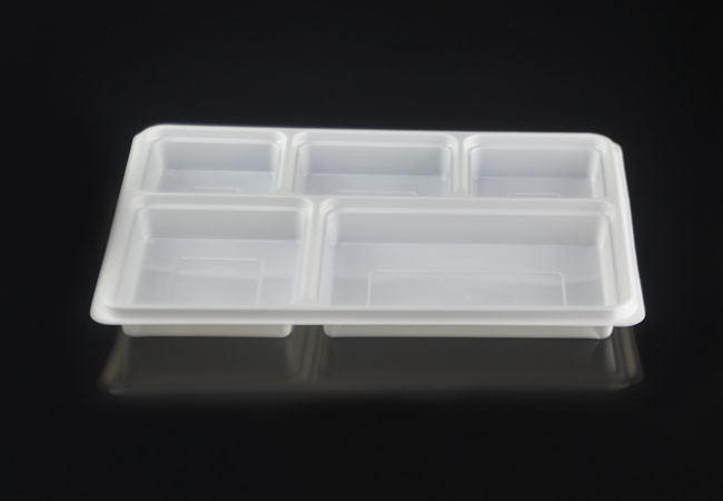 Large 5 Compartment Rectangular Disposable Plastic Plate-APR51 : large disposable plates - pezcame.com