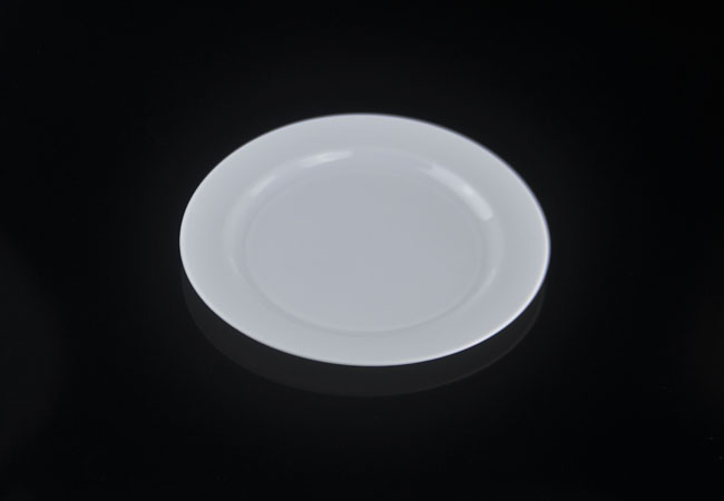 Disposable plates that look like china
